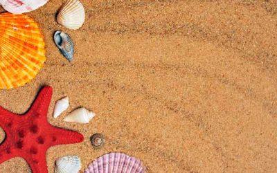 7 Consejos para evitar robos en vacaciones